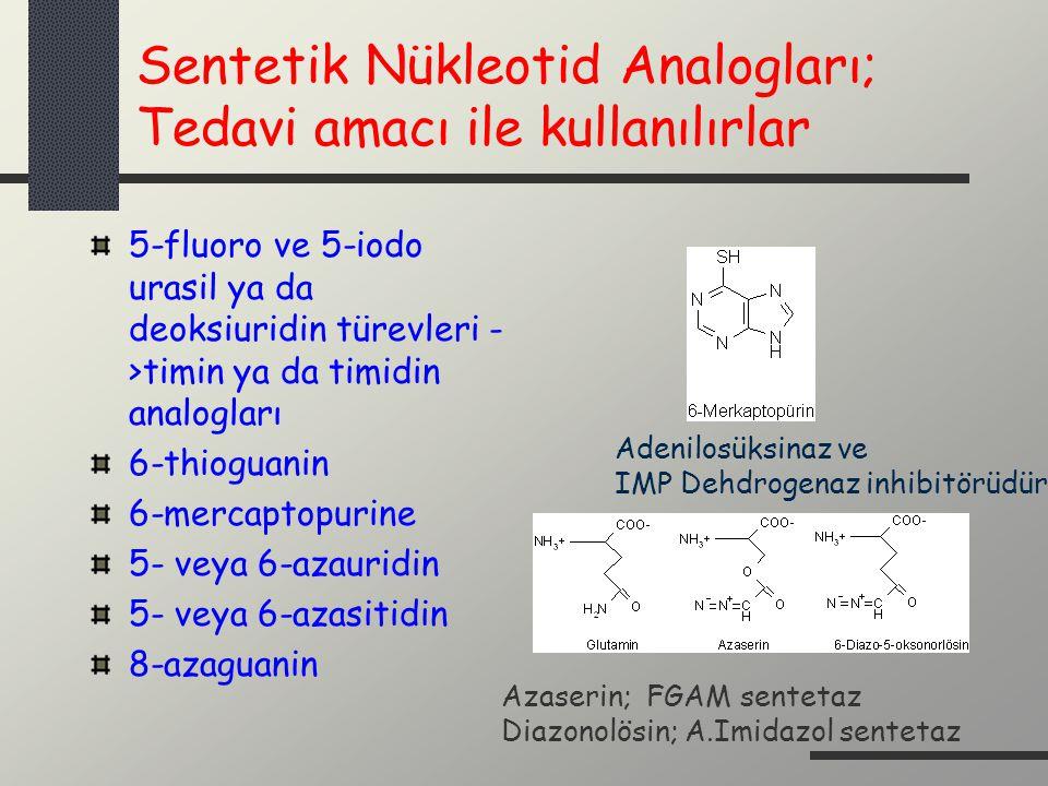 Sentetik Nükleotid Analogları; Tedavi amacı ile kullanılırlar 5-fluoro ve 5-iodo urasil ya da deoksiuridin türevleri - >timin ya da timidin analogları