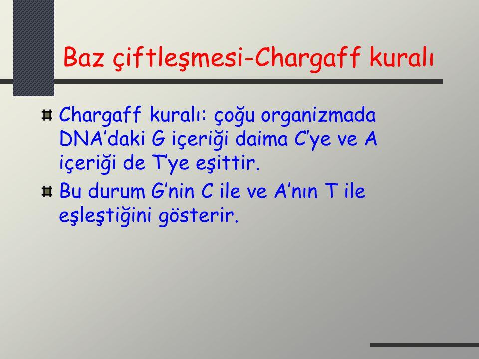 Baz çiftleşmesi-Chargaff kuralı Chargaff kuralı: çoğu organizmada DNA'daki G içeriği daima C'ye ve A içeriği de T'ye eşittir. Bu durum G'nin C ile ve