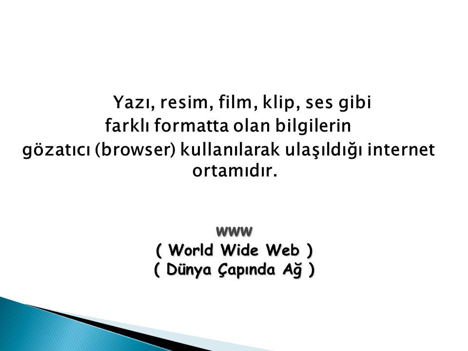 Yazı, resim, film, klip, ses gibi farklı formatta olan bilgilerin gözatıcı (browser) kullanılarak ulaşıldığı internet ortamıdır. www ( World Wide Web
