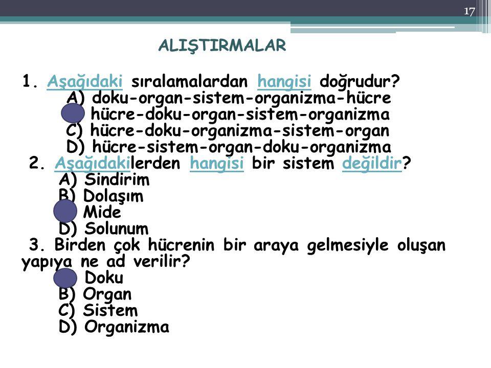 ALIŞTIRMALAR 1. Aşağıdaki sıralamalardan hangisi doğrudur? A) doku-organ-sistem-organizma-hücre B) hücre-doku-organ-sistem-organizma C) hücre-doku-org