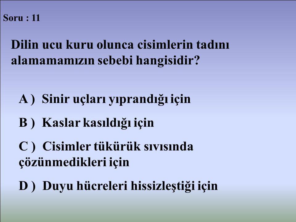 Soru : 11 Dilin ucu kuru olunca cisimlerin tadını alamamamızın sebebi hangisidir? A ) Sinir uçları yıprandığı için B ) Kaslar kasıldığı için C ) Cisim