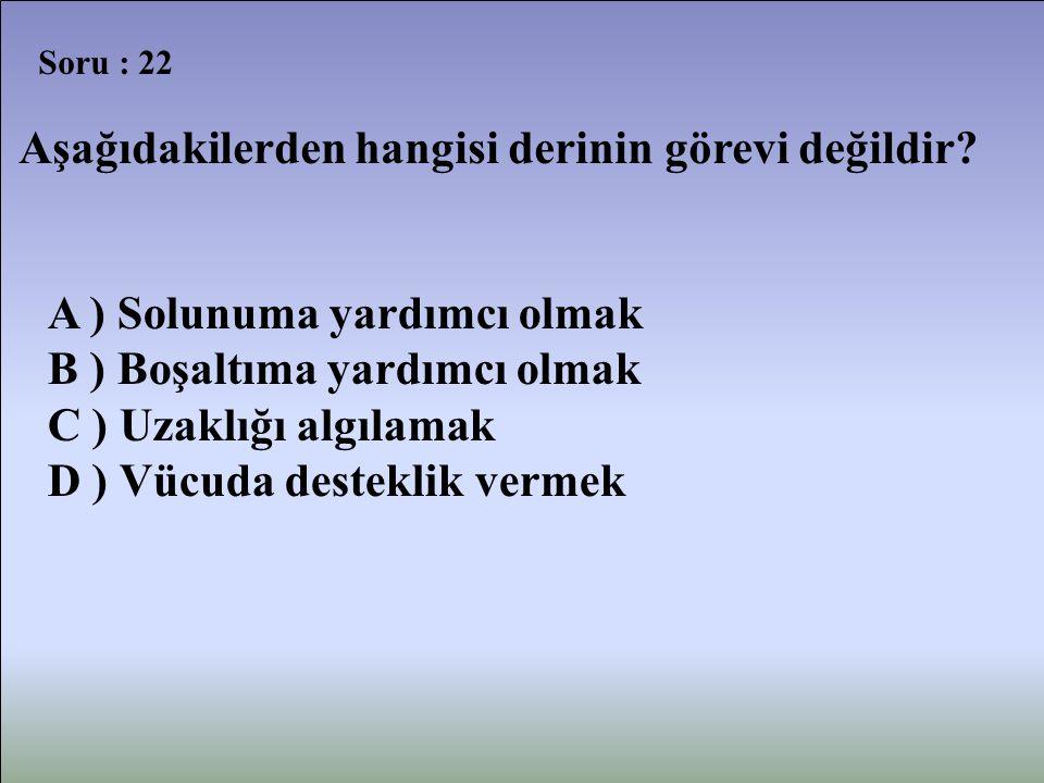 Soru : 22 Aşağıdakilerden hangisi derinin görevi değildir? A ) Solunuma yardımcı olmak B ) Boşaltıma yardımcı olmak C ) Uzaklığı algılamak D ) Vücuda