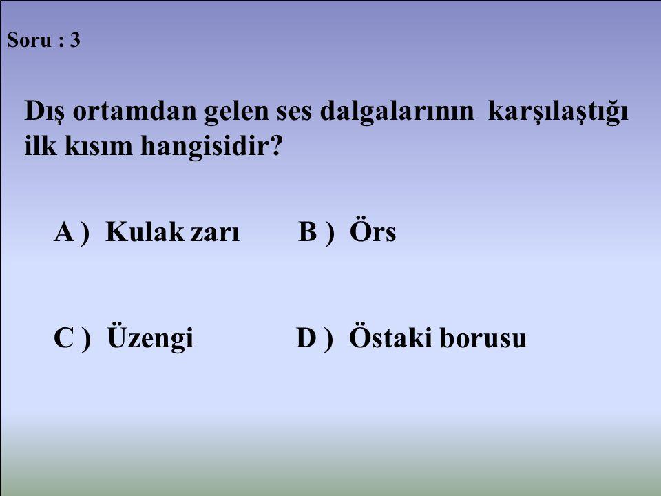 Soru : 3 Dış ortamdan gelen ses dalgalarının karşılaştığı ilk kısım hangisidir? A ) Kulak zarı B ) Örs C ) Üzengi D ) Östaki borusu