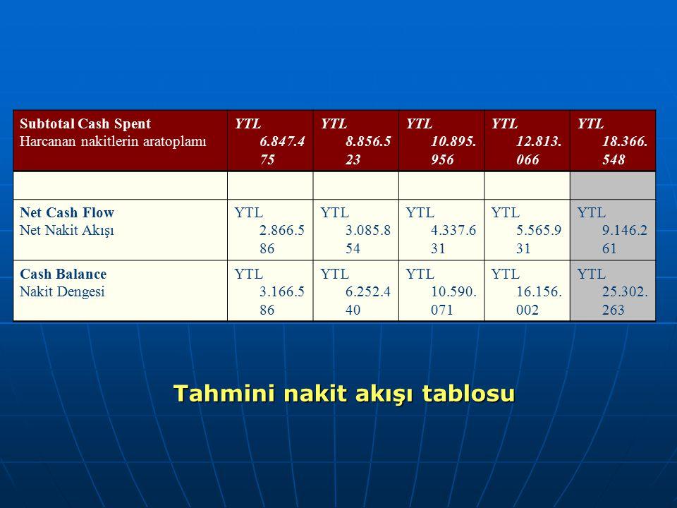 Subtotal Cash Spent Harcanan nakitlerin aratoplamı YTL 6.847.4 75 YTL 8.856.5 23 YTL 10.895. 956 YTL 12.813. 066 YTL 18.366. 548 Net Cash Flow Net Nak