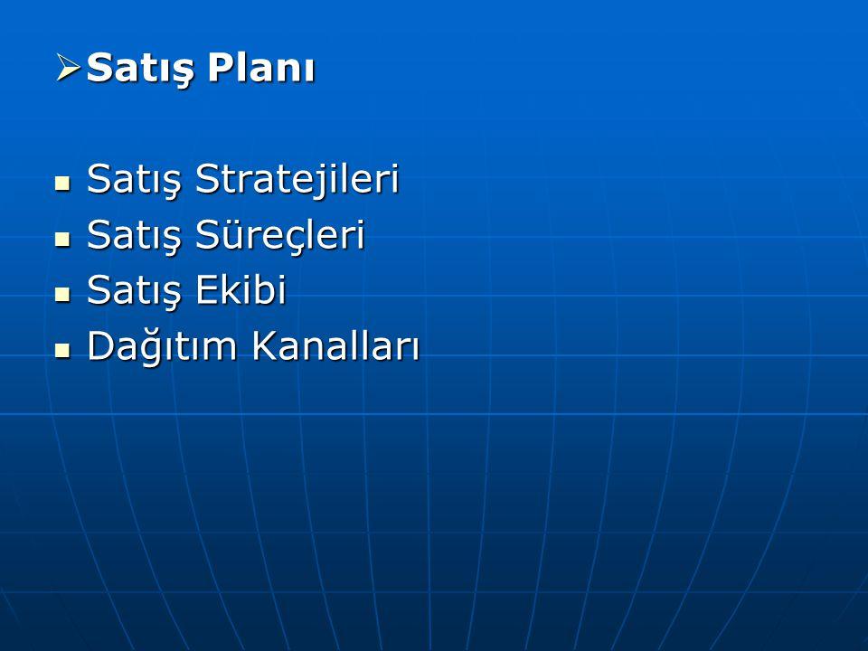  Satış Planı Satış Stratejileri Satış Stratejileri Satış Süreçleri Satış Süreçleri Satış Ekibi Satış Ekibi Dağıtım Kanalları Dağıtım Kanalları
