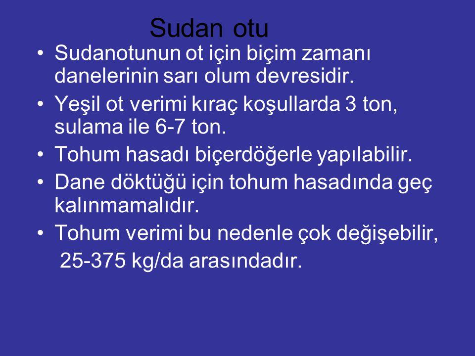 Sudan otu Sudanotunun ot için biçim zamanı danelerinin sarı olum devresidir. Yeşil ot verimi kıraç koşullarda 3 ton, sulama ile 6-7 ton. Tohum hasadı