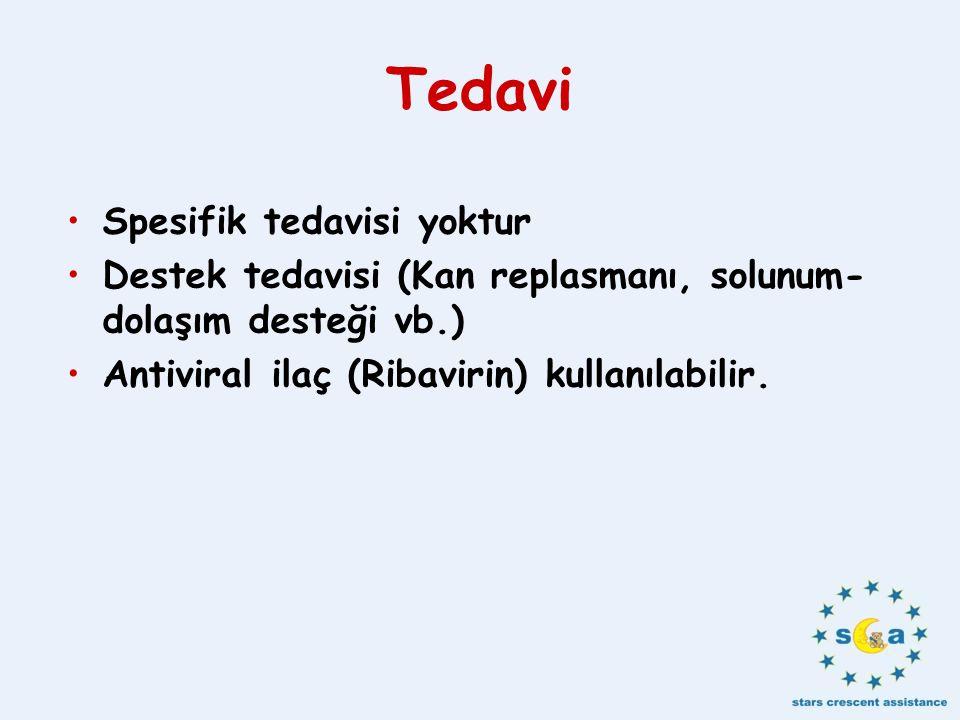 Tedavi Spesifik tedavisi yoktur Destek tedavisi (Kan replasmanı, solunum- dolaşım desteği vb.) Antiviral ilaç (Ribavirin) kullanılabilir.