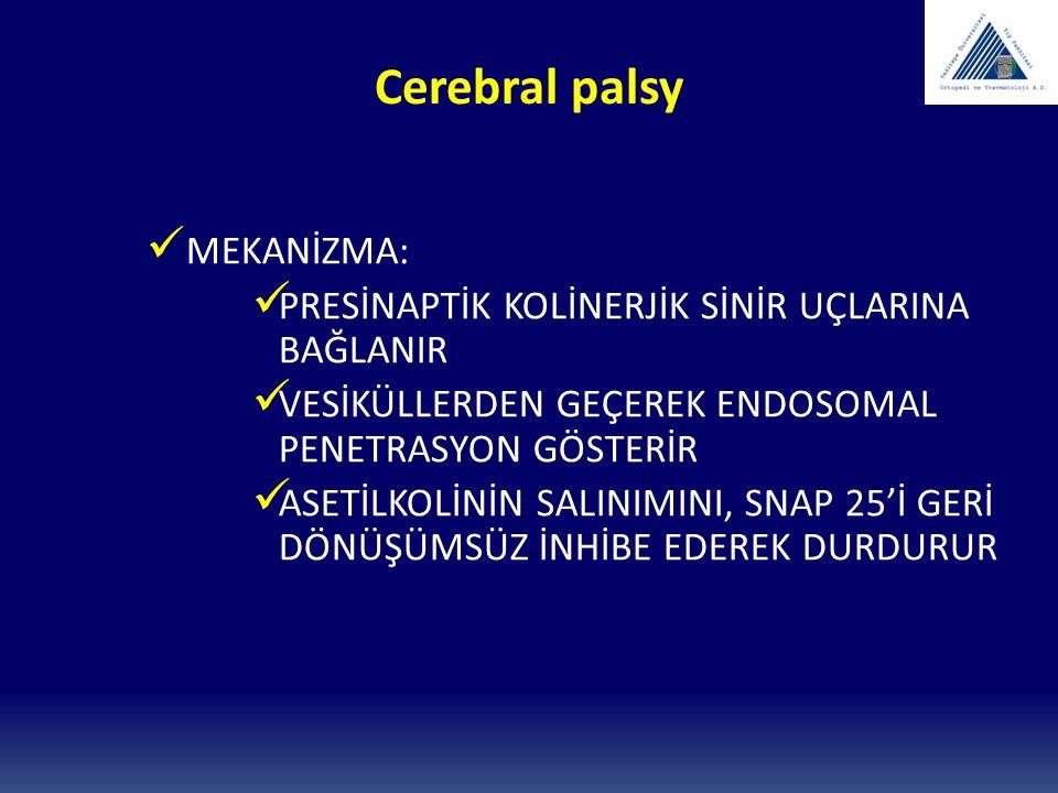 Cerebral palsy MEKANİZMA: PRESİNAPTİK KOLİNERJİK SİNİR UÇLARINA BAĞLANIR VESİKÜLLERDEN GEÇEREK ENDOSOMAL PENETRASYON GÖSTERİR ASETİLKOLİNİN SALINIMINI