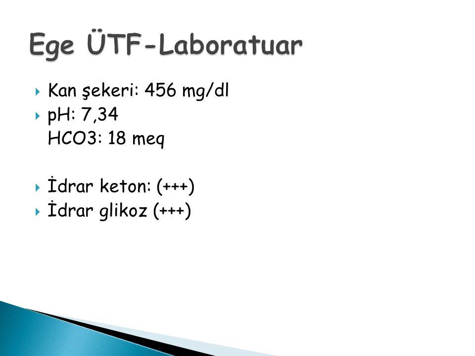  Kan şekeri: 456 mg/dl  pH: 7,34 HCO3: 18 meq  İdrar keton: (+++)  İdrar glikoz (+++)