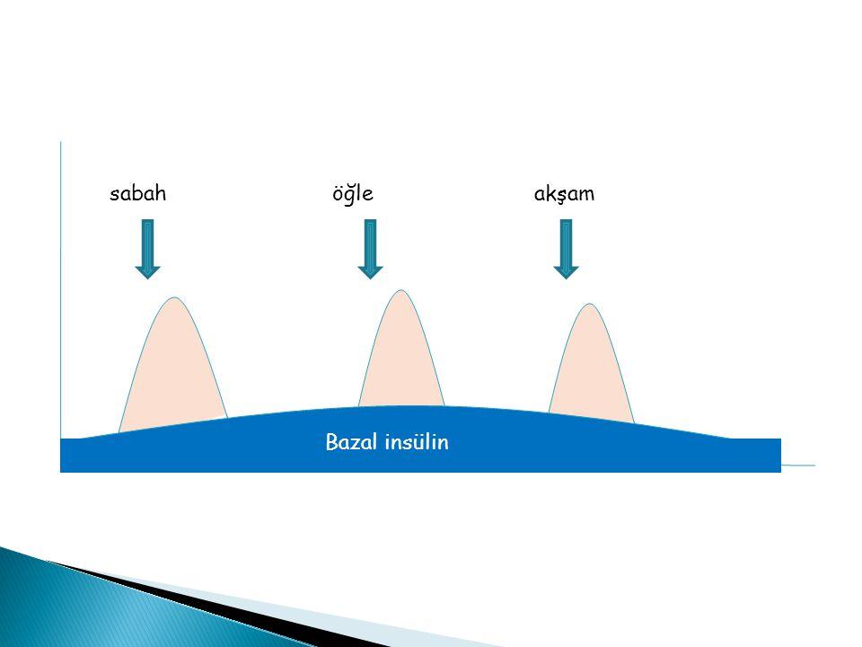 sabahöğleakşam Bazal insülin