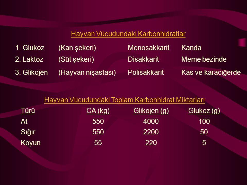 Hayvan Vücudundaki Karbonhidratlar 1. Glukoz(Kan şekeri)MonosakkaritKanda 2. Laktoz(Süt şekeri)DisakkaritMeme bezinde 3. Glikojen(Hayvan nişastası)Pol