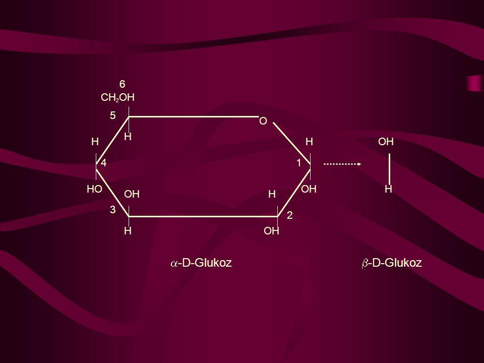 H CH 2 OH 6 5 H HO 4 OH H 3 H 2 H 1 H O  -D-Glukoz  -D-Glukoz