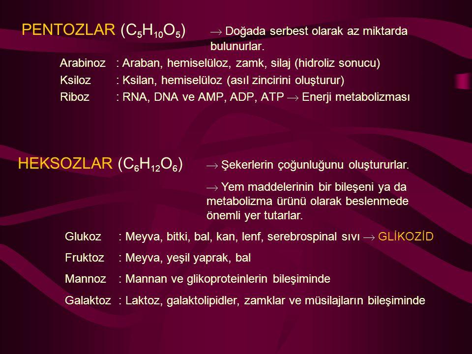 PENTOZLAR (C 5 H 10 O 5 )  Doğada serbest olarak az miktarda bulunurlar. Arabinoz: Araban, hemiselüloz, zamk, silaj (hidroliz sonucu) Ksiloz: Ksilan,