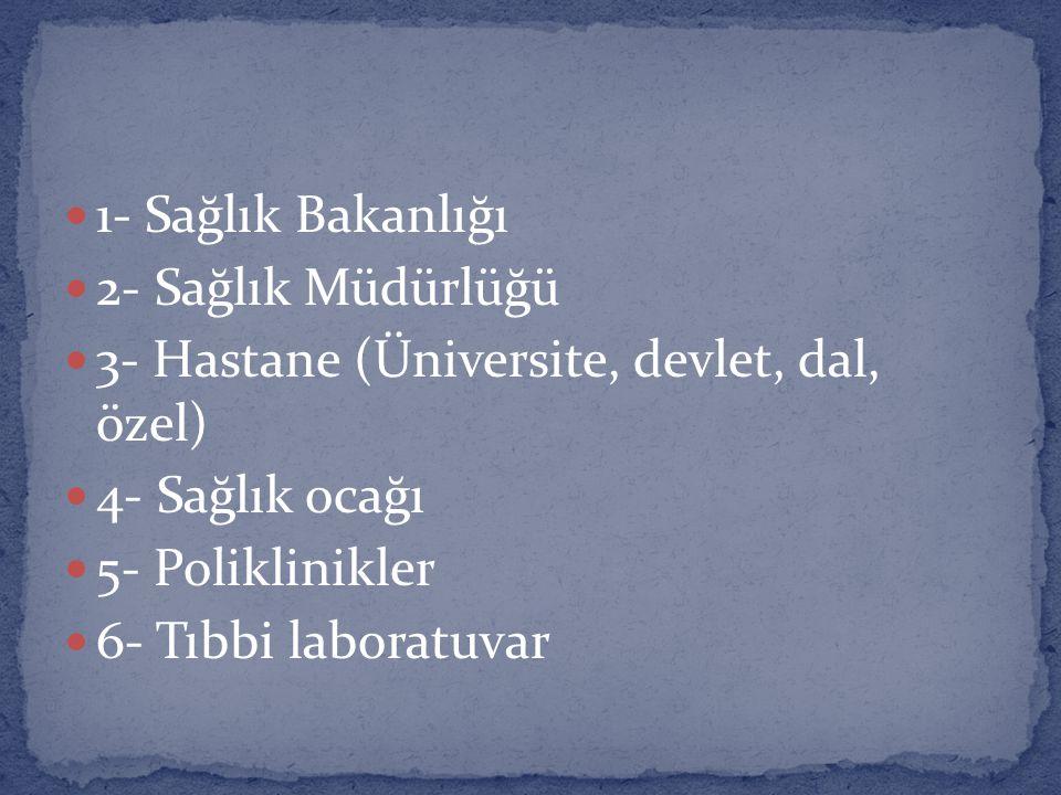 1- Sağlık Bakanlığı 2- Sağlık Müdürlüğü 3- Hastane (Üniversite, devlet, dal, özel) 4- Sağlık ocağı 5- Poliklinikler 6- Tıbbi laboratuvar