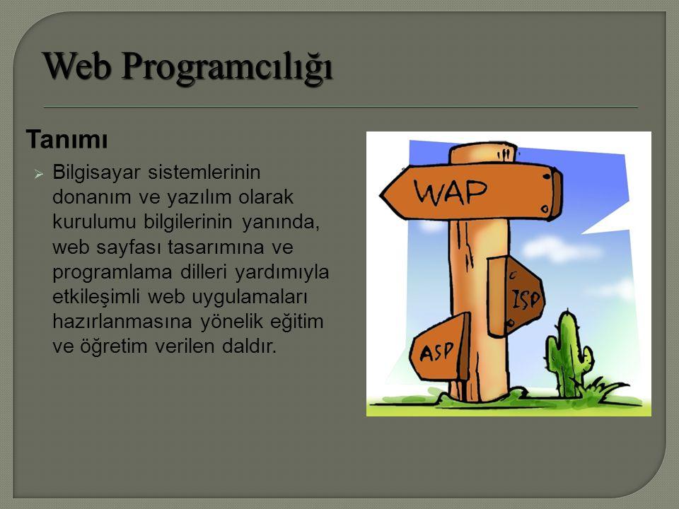Tanımı  Bilgisayar sistemlerinin donanım ve yazılım olarak kurulumu bilgilerinin yanında, web sayfası tasarımına ve programlama dilleri yardımıyla etkileşimli web uygulamaları hazırlanmasına yönelik eğitim ve öğretim verilen daldır.