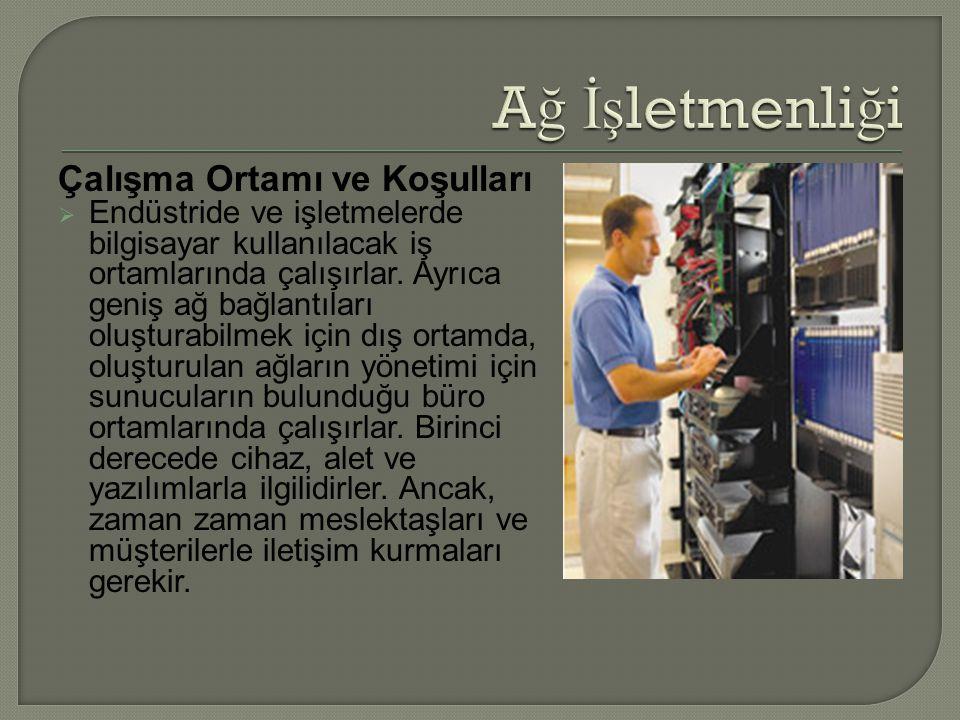 Çalışma Ortamı ve Koşulları  Endüstride ve işletmelerde bilgisayar kullanılacak iş ortamlarında çalışırlar.