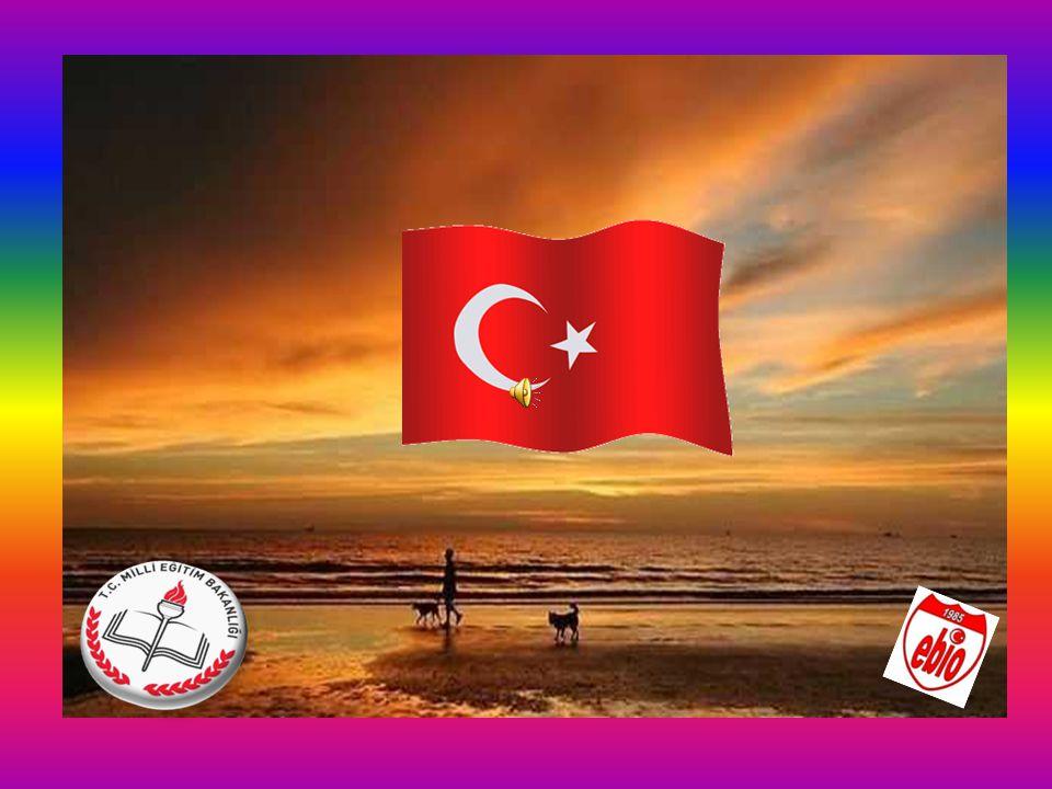 Okulumuz; Atatürk inkılâplarına ve Anayasamızın başlangıcında ifadesini bulan Türk Milliyetçiliğine bağlı, Türk Milletinin milli, ahlaki insani, manevi ve kültürel değerlerini benimseyen koruyan ve geliştiren, vatanını ve milletini seven ve koruyan, insan haklarına saygılı, Cumhuriyetimize karşı sorumluluklarını bilen ve bunları davranış haline getiren vatandaşlar yetiştirmektir.
