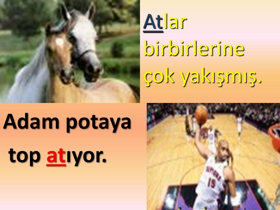 Atlar birbirlerine çok yakışmış. Adam potaya top atıyor. top atıyor.
