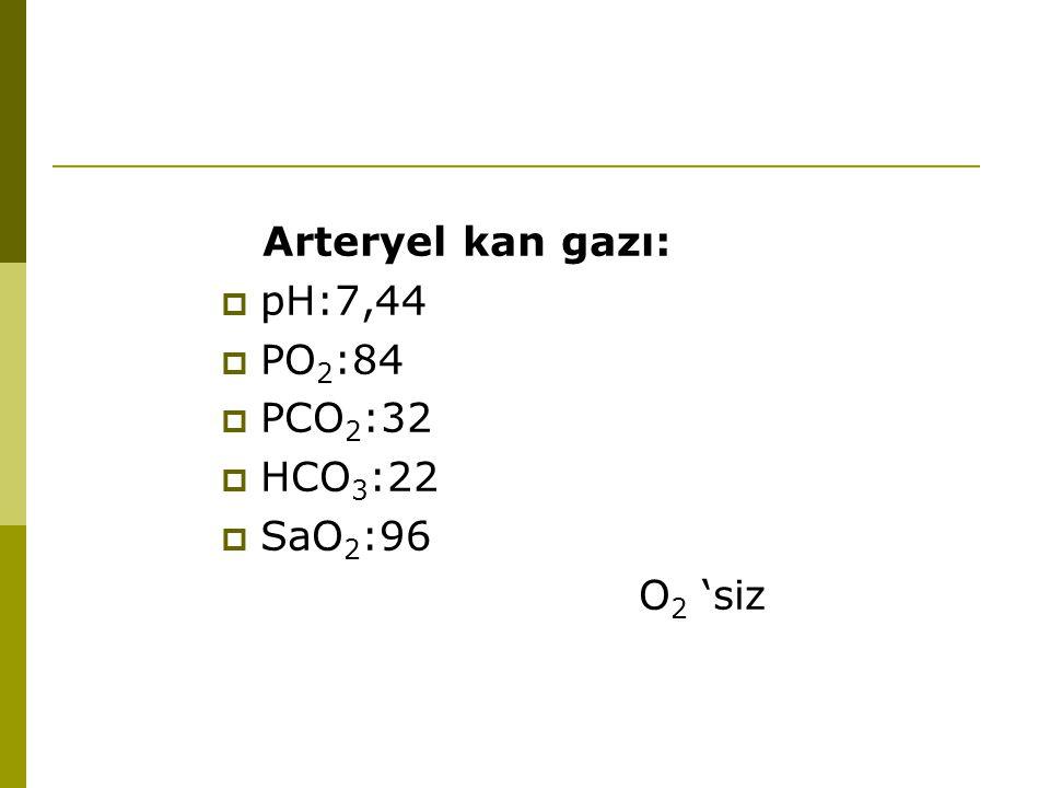 Arteryel kan gazı:  pH:7,44  PO 2 :84  PCO 2 :32  HCO 3 :22  SaO 2 :96 O 2 'siz