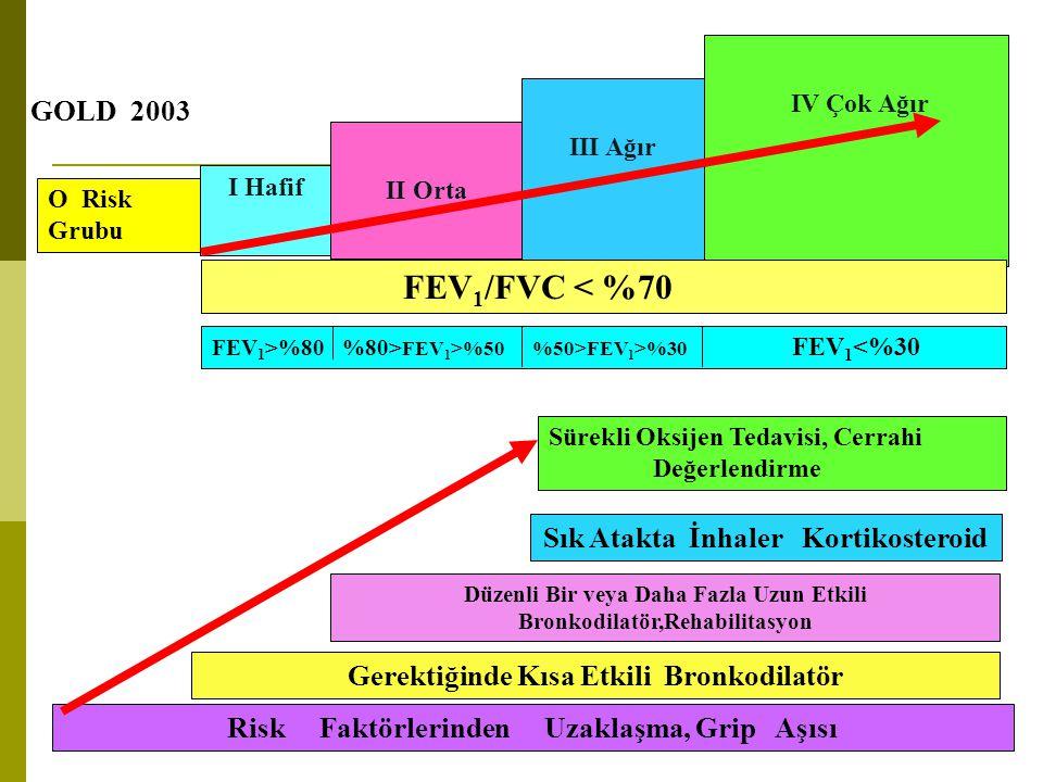 O Risk Grubu I Hafif II Orta III Ağır IV Çok Ağır Risk Faktörlerinden Uzaklaşma, Grip Aşısı Gerektiğinde Kısa Etkili Bronkodilatör Düzenli Bir veya Da