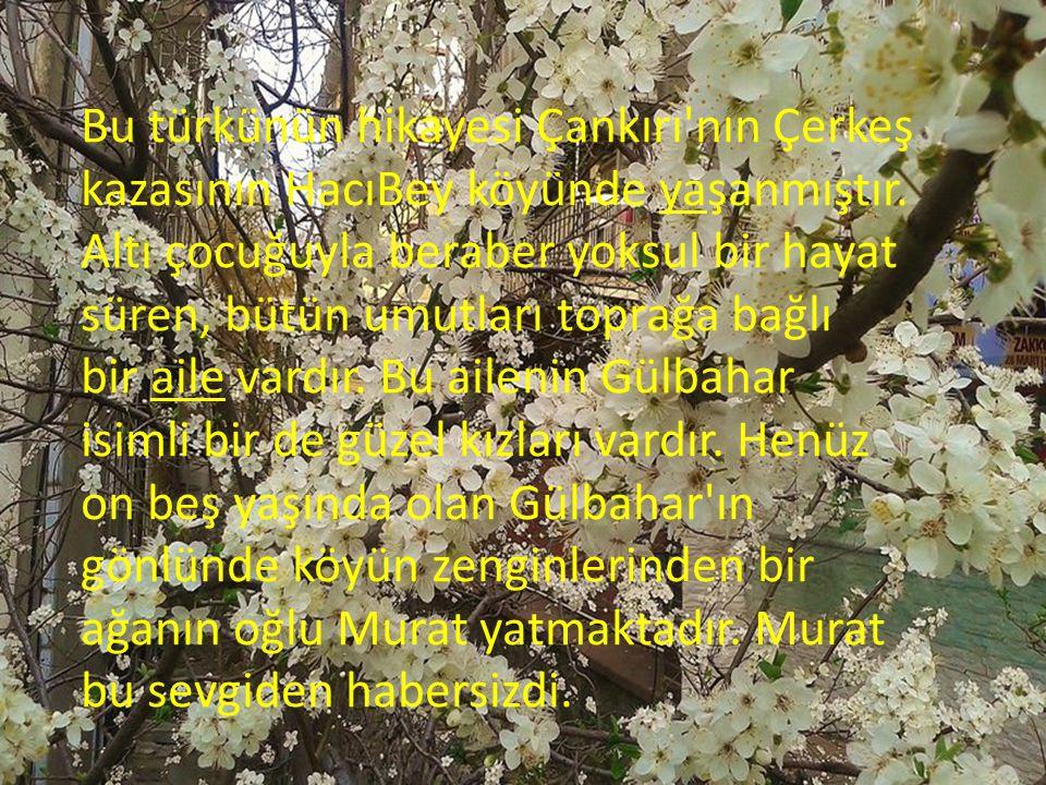 Bu türkünün hikayesi Çankırı'nın Çerkeş kazasının HacıBey köyünde yaşanmıştır. Altı çocuğuyla beraber yoksul bir hayat süren, bütün umutları toprağa b