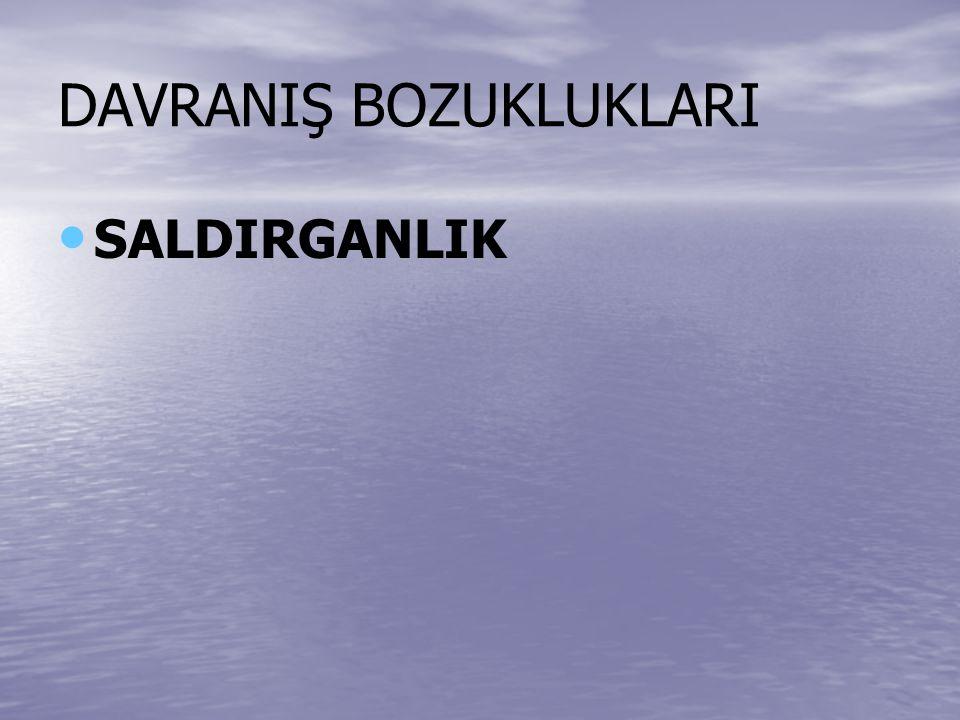 DAVRANIŞ BOZUKLUKLARI SALDIRGANLIK