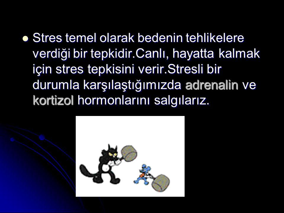 Stres temel olarak bedenin tehlikelere verdiği bir tepkidir. Canlı, hayatta kalmak için stres tepkisini verir.Stresli bir durumla karşılaştığımızda ad