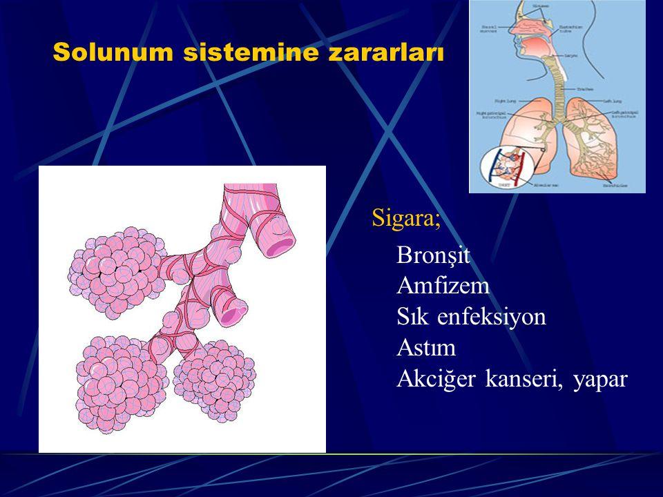 Solunum yolu tüycükleri Bir nefes sigara, solunum yolundaki tüycükleri 2 saat felç ediyor