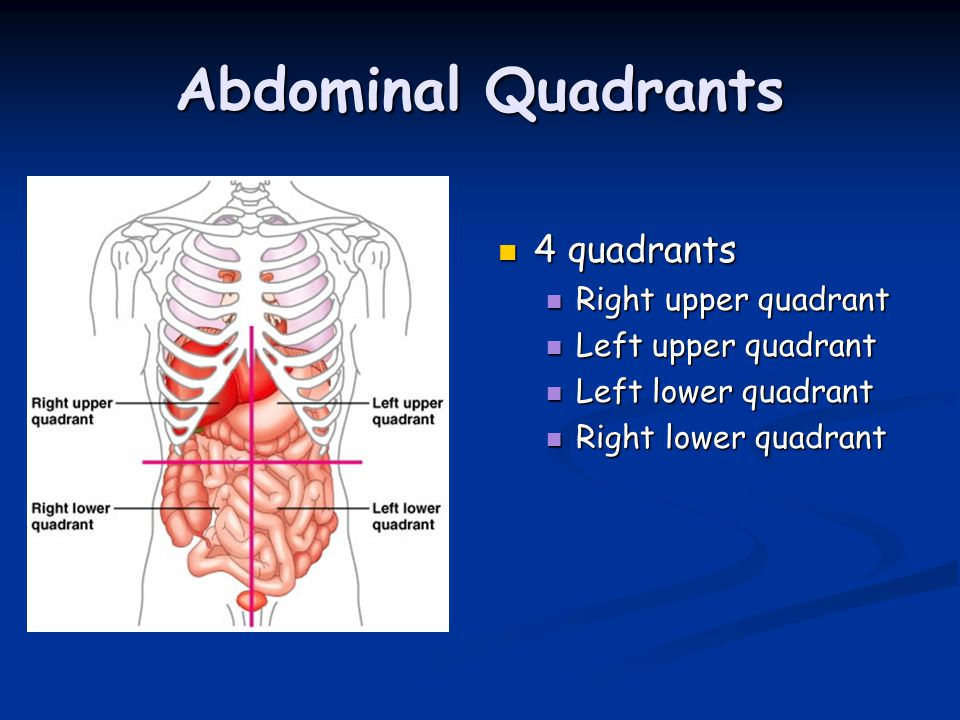 Abdominal Quadrants 4 quadrants Right upper quadrant Left upper quadrant Left lower quadrant Right lower quadrant