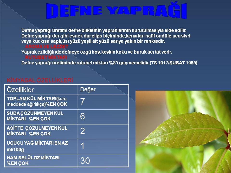 Defne yaprağı üretimi defne bitkisinin yapraklarının kurutulmasıyla elde edilir.