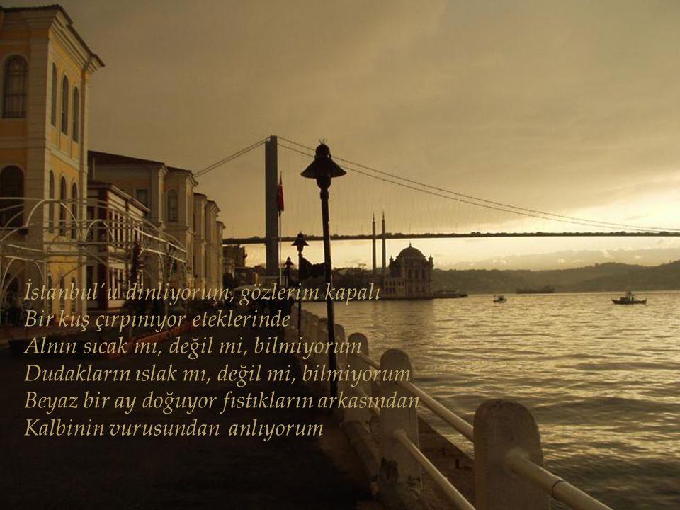 İstanbul u dinliyorum, gözlerim kapalı Bir kuş çırpınıyor eteklerinde Alnın sıcak mı, değil mi, bilmiyorum Dudakların ıslak mı, değil mi, bilmiyorum Beyaz bir ay doğuyor fıstıkların arkasından Kalbinin vurusundan anlıyorum