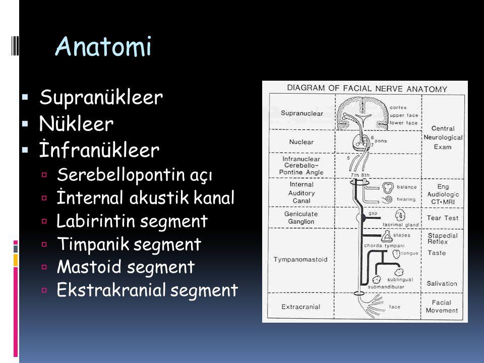 Anatomi  Supranükleer  Nükleer  İnfranükleer  Serebellopontin açı  İnternal akustik kanal  Labirintin segment  Timpanik segment  Mastoid segme