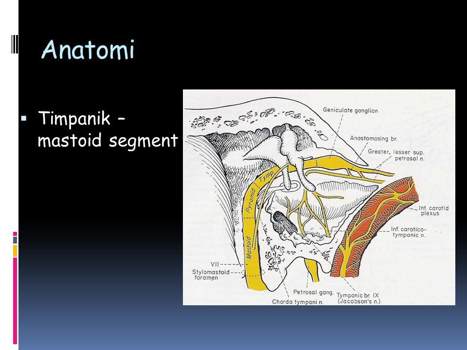 Ekstrakranial segment  Tümörler  Parotis tümörleri  Cilt tümörleri  Travma  Kesici  Künt  İatrojenik  Parotis cerrahisi  Temporomandibüler eklem cerrahisi