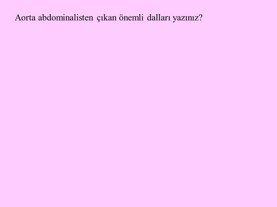 Aorta abdominalisten çıkan önemli dalları yazınız?