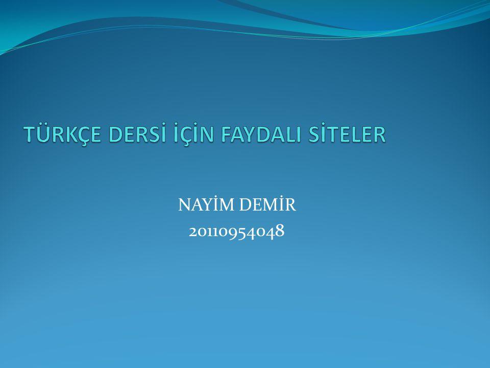 NAYİM DEMİR 20110954048