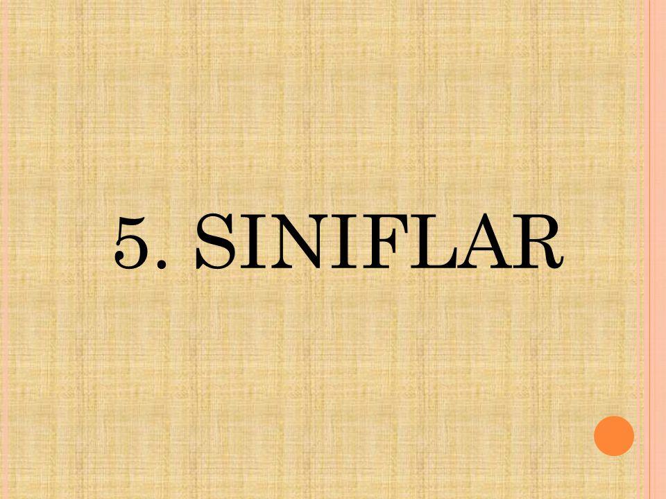 5. SINIFLAR