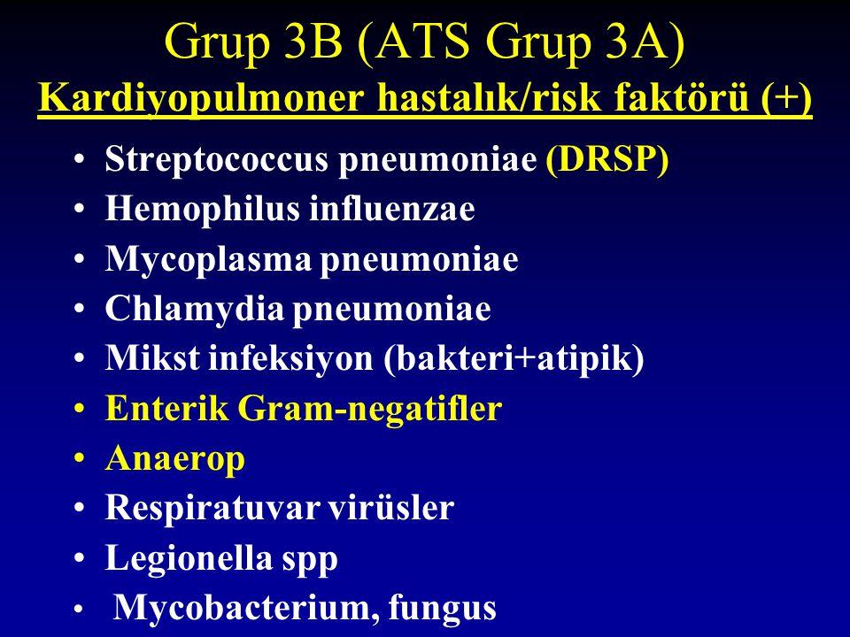 Grup 3B (ATS Grup 3A) Kardiyopulmoner hastalık/risk faktörü (+) Streptococcus pneumoniae (DRSP) Hemophilus influenzae Mycoplasma pneumoniae Chlamydia