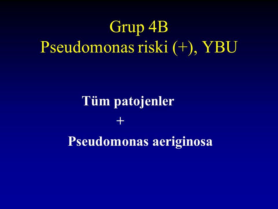 Grup 4B Pseudomonas riski (+), YBU Tüm patojenler + Pseudomonas aeriginosa