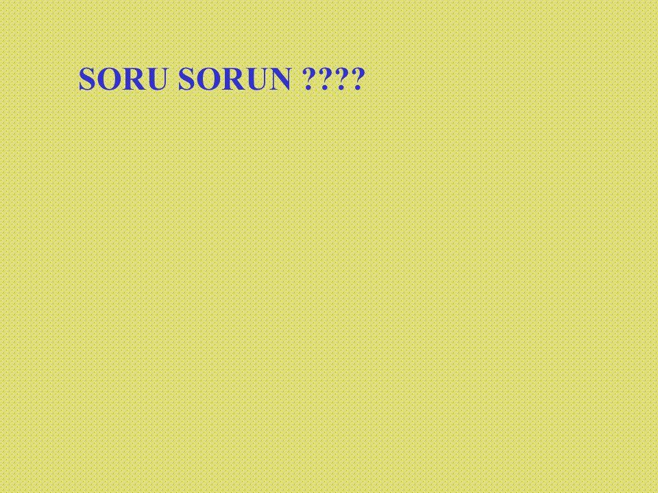 SORU SORUN ????
