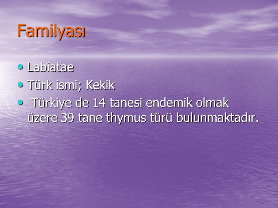 Familyası Labiatae Labiatae Türk ismi; Kekik Türk ismi; Kekik Türkiye de 14 tanesi endemik olmak üzere 39 tane thymus türü bulunmaktadır. Türkiye de 1
