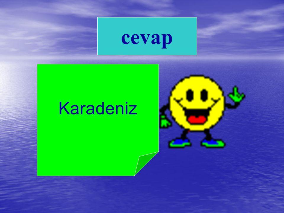 Karadeniz cevap