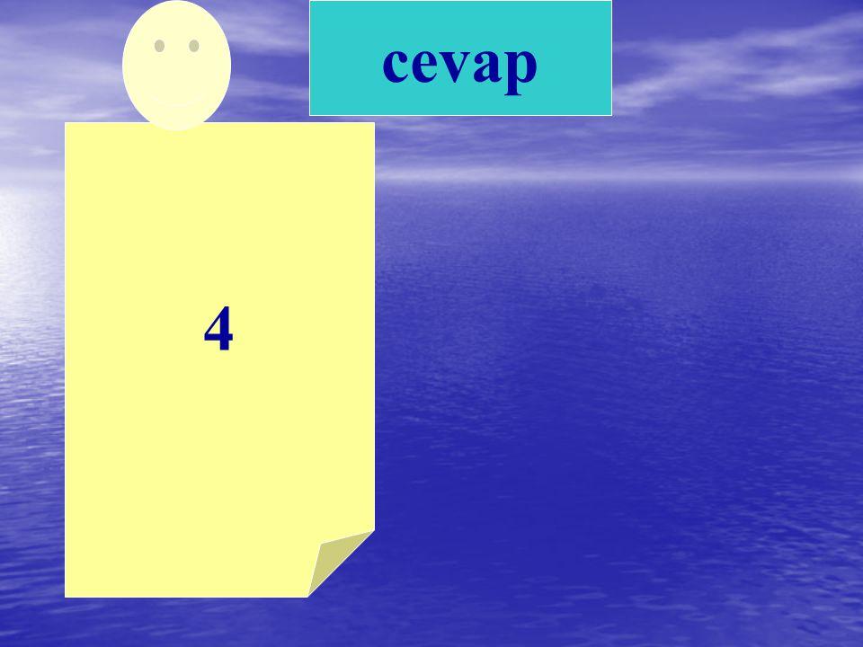 4 cevap