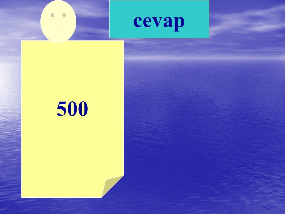 500 cevap