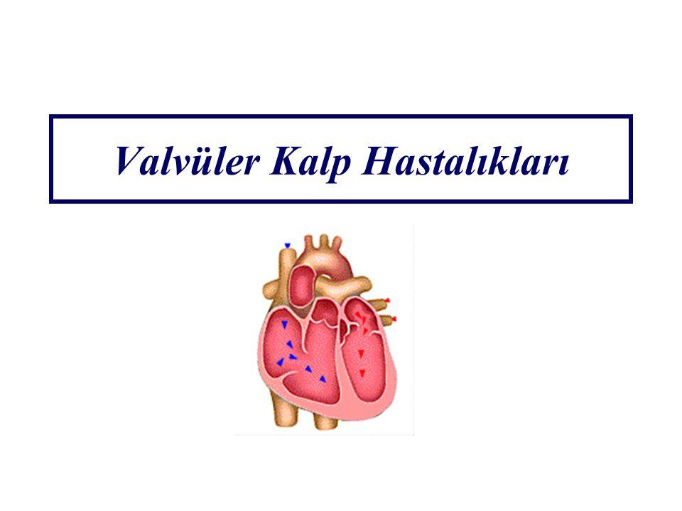 Valvüler Kalp Hastalıkları