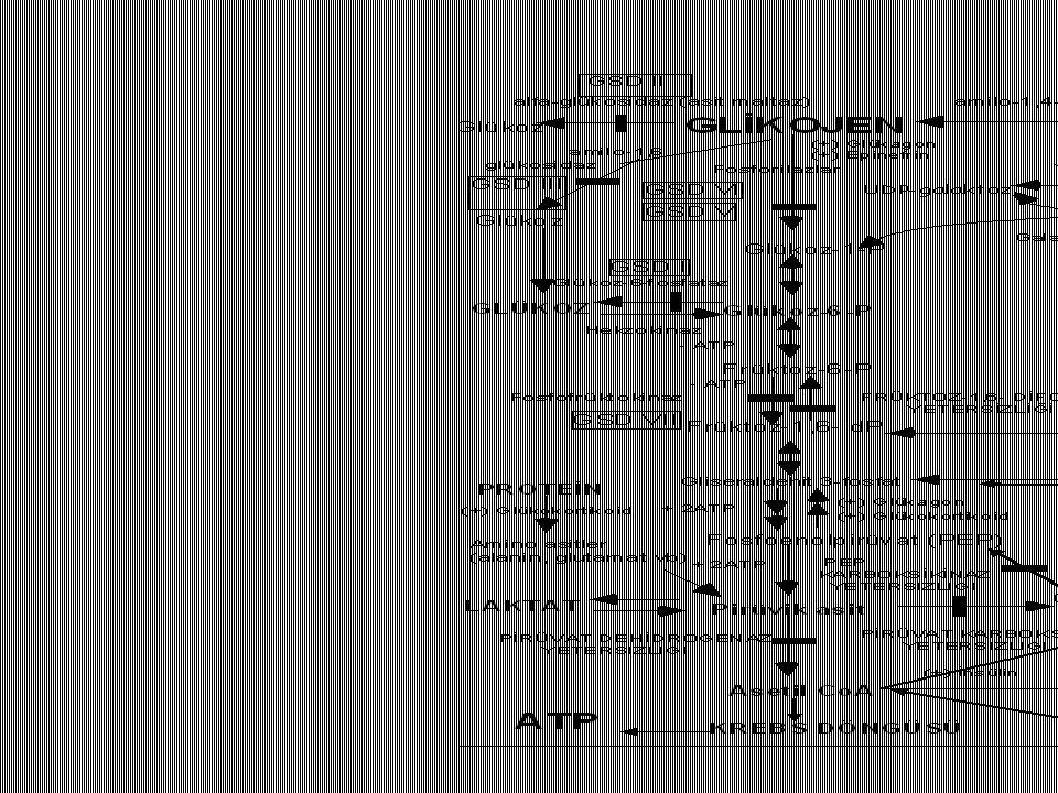 Kalıtsal Früktoz entoleranı (Früktozemi) Früktoz Früktoz-1P Glükoz Früktokinaz Aldolaz