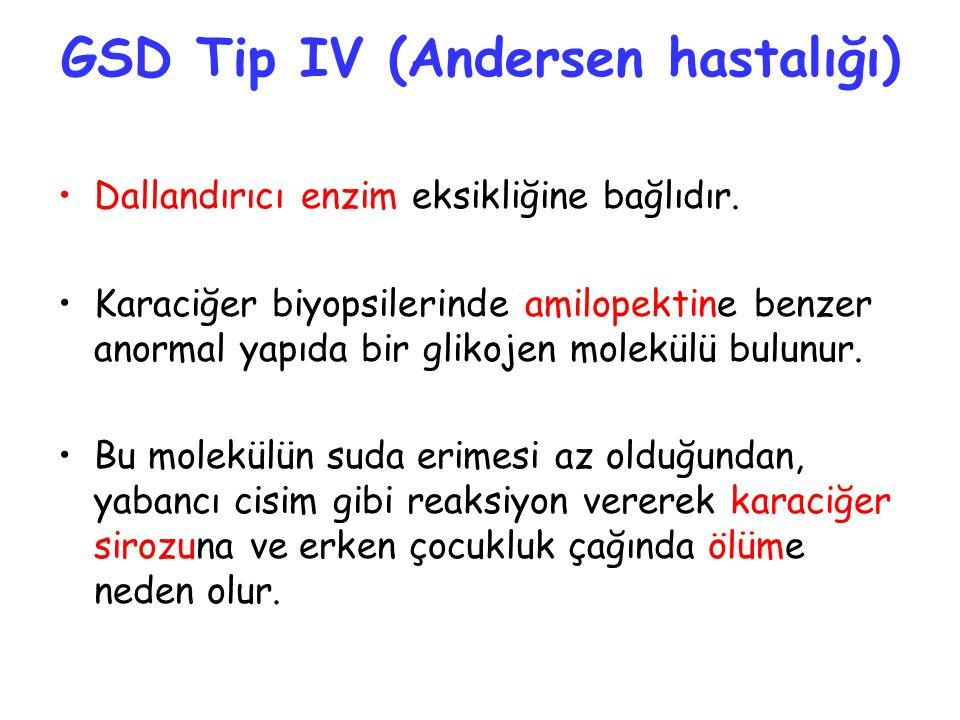 GSD Tip IV (Andersen hastalığı) Dallandırıcı enzim eksikliğine bağlıdır. Karaciğer biyopsilerinde amilopektine benzer anormal yapıda bir glikojen mole