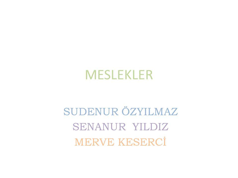MESLEKLER SUDENUR ÖZYILMAZ SENANUR YILDIZ MERVE KESERCİ