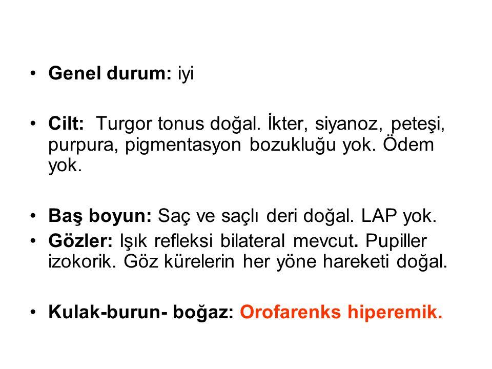 Genel durum: iyi Cilt: Turgor tonus doğal.