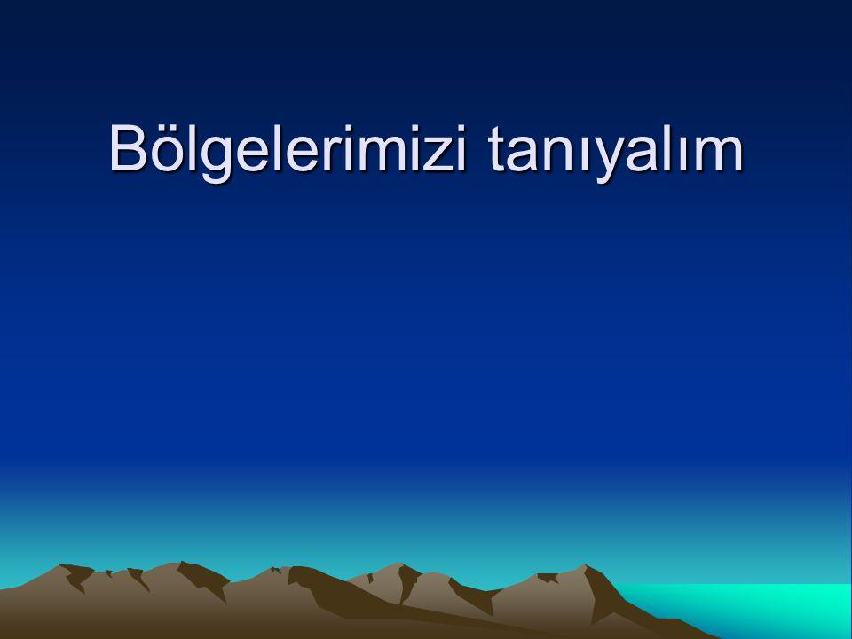 1-Marmara bölgesi Ülkemizin kuzeybatısında yer alır.İstanbul ve Çanakkale bu bölgede bulunur.Marmara bölgesi sanayi bakımından en gelişmiş bölgedir.