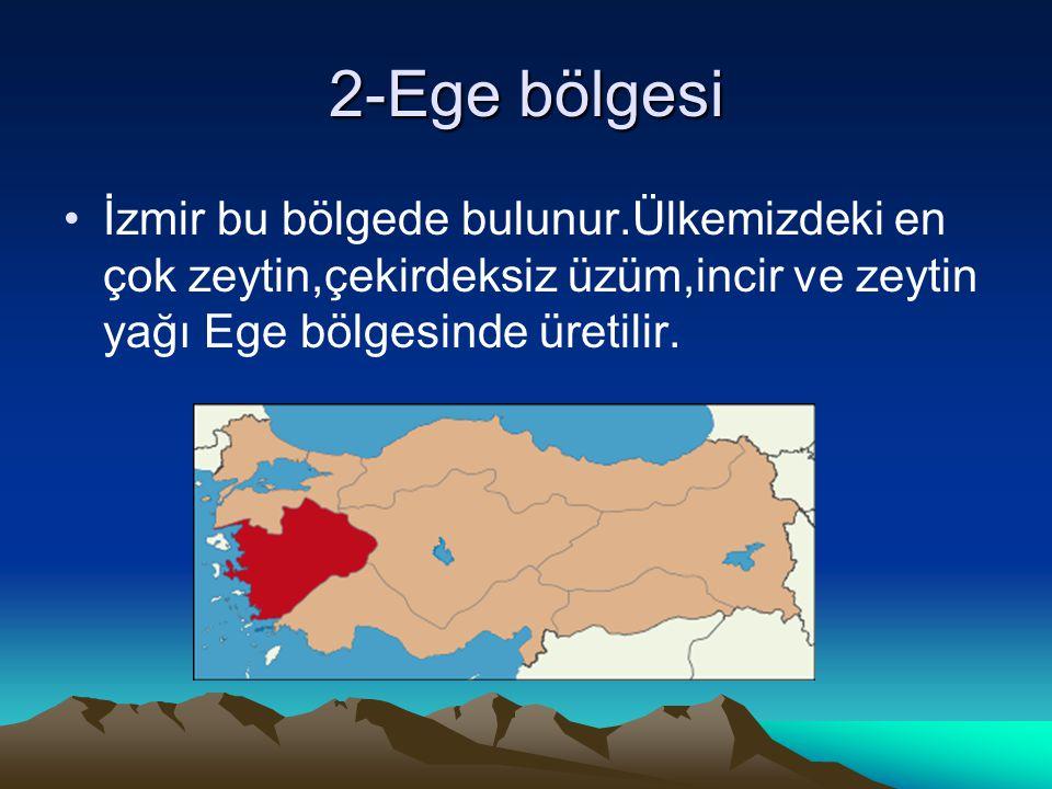 2-Ege bölgesi İzmir bu bölgede bulunur.Ülkemizdeki en çok zeytin,çekirdeksiz üzüm,incir ve zeytin yağı Ege bölgesinde üretilir.